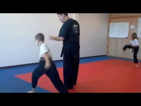 Hampton's Karate Academy - Forms Practice 01