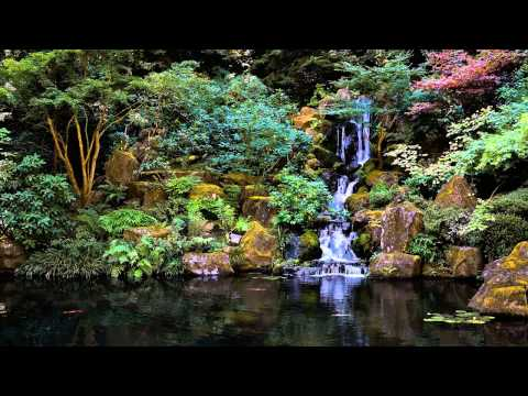 3 HOURS of The Best Relaxing music | Bamboo Flute | – Meditation – Spa – Healing – Sleep
