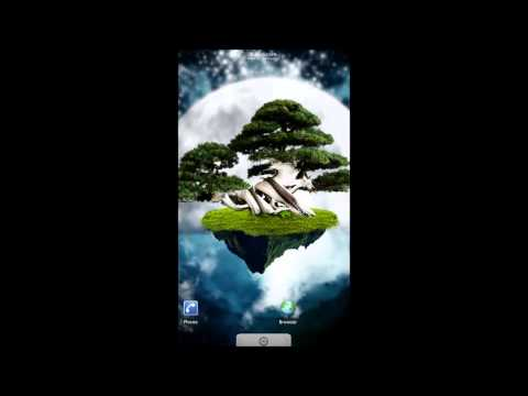 Video of Tree of the universe