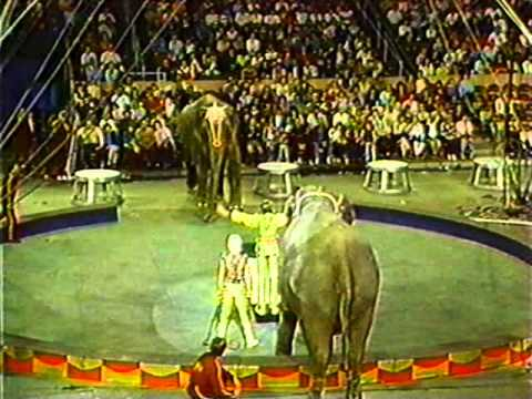 Variety Show - Ringling Brothers Barnum &amp; Bailey Circus Showreel 1987