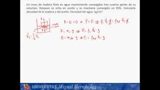 Umh1148 2013-14 Lec003a Fluidos. Problema De Arquimedes 1