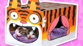 Video Cardboard Tiger Cat House - Crafts Ideas With Boxes | DIY on BoxYourself MP3, 3GP, MP4, WEBM, AVI, FLV September 2019