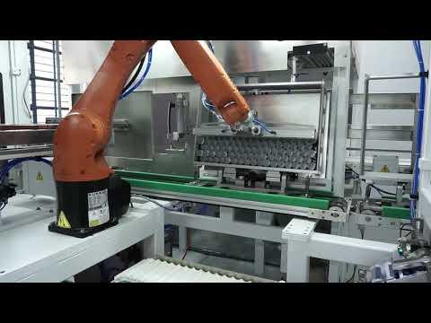 Robotic Tube Packer