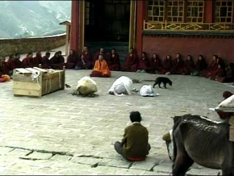 sky burial rituals in tibetan buddhism What is sky burial some communities adopted sky burial practices when they converted to tibetan buddhism its existence highlights the diversity of belief within that population and how much our funeral ceremonies and rituals change from place to place and over time.