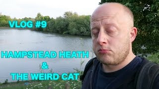 Hampstead Heath & The Weird Cat - Vlog#9