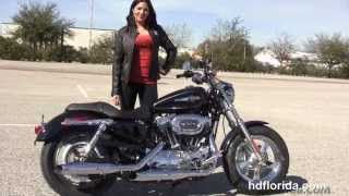 10. New 2015 Harley Davidson XL1200C Sportster 1200 Custom Motorcycles for sale