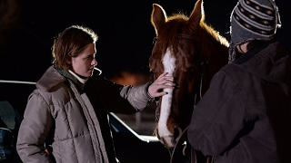 Nonton Kristen Stewart   Lily Gladstone   Certain Women Film Subtitle Indonesia Streaming Movie Download