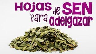 Cómo hacer una tisana de hojas de sen para depurar tu organismo