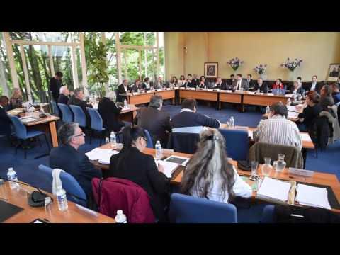 Conseil Municipal et nuit Debout au Blanc Mesnil