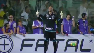 Insanidade Santista - Inscreva-se Um bom time começa por um bom goleiro. Vanderlei, não é midiático, nunca é colocado entre os melhores goleiros do Brasil, ...