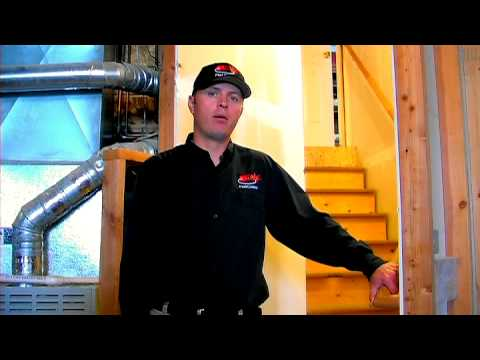 Termite Control : How to Prevent Termites Naturally