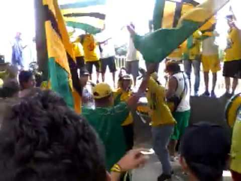 Fortaleza Leoparda Sur - Dale Auriverde - Fortaleza Leoparda Sur - Atlético Bucaramanga