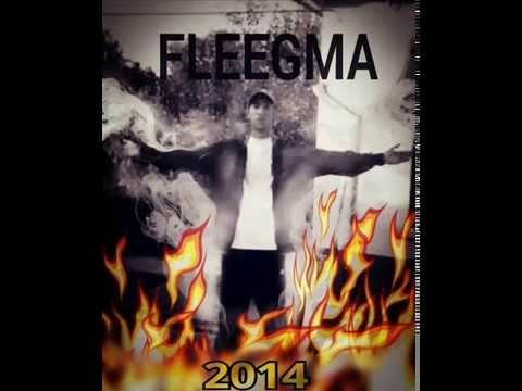 Fleegma-Elmezavar