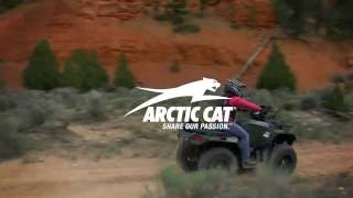 4. 2017 ARCTIC CAT : Alterra ATV Experience