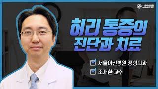 허리통증의 진단과 치료 미리보기