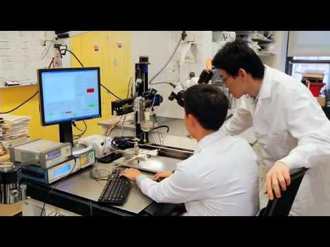 Ultrazvuk dokáže léčit mozek
