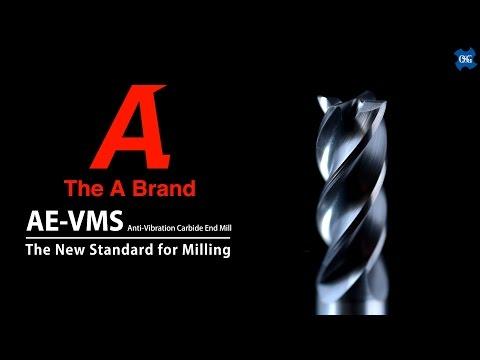 Fraises AE-VMS
