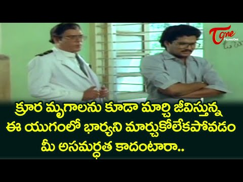 Rao Gopalarao Ultimate Movie Scene | Telugu Hit Movie Svenes | TeluguOne