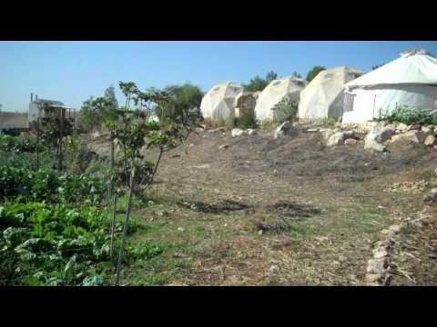 Eco Israel – Ecology, Judaism and Israel | Permaculture TV free ...
