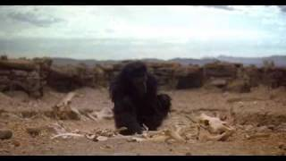 2001  A Space Odyssey   The Dawn Of Man