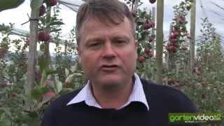 #1358 Redloves in Australien - Mark Joyce von Lenswood Apples im Interview