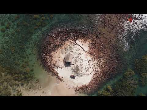 The Beach – Trailer