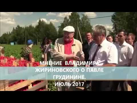 Павел Грудинин , мнение Жириновского это смех и грех .