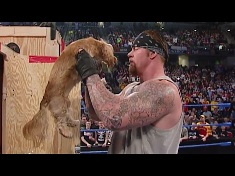 Video Big Show gives The Undertaker a puppy: SmackDown, Feb. 20, 2003 download in MP3, 3GP, MP4, WEBM, AVI, FLV January 2017