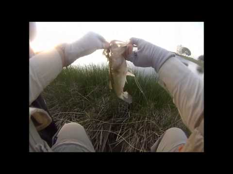 Nick Fly Fishing – Farm Pond, TX – Large Mouth Bass