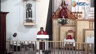 El Evangelio comentado 14-08-2018