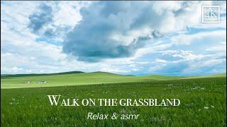 Walking the grasslands of Inner Mongolia, China.
