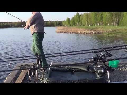 рыбалка в белоруссии на брестской области