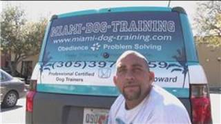 Dog Training&Care : How To Become A Certified Dog Trainer
