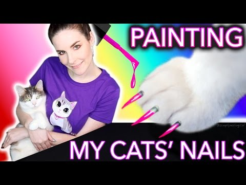 Painting my Cats' Nails