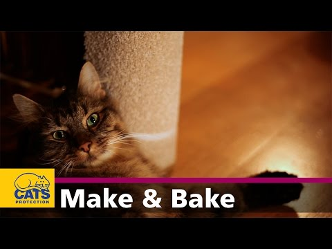 How to make a cat scratching post - Feline Crafty episode five