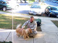 Link: Seeing my dog the day I got back from Afghanistan - http://bit.ly/syKLR