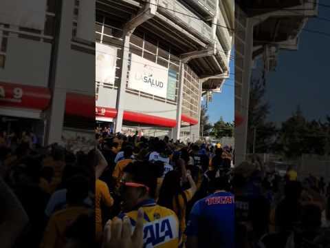 Hinchada de Tigres. Estadio Victoria - Libres y Lokos - Tigres