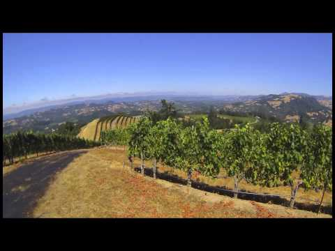 Ferrari Carano s A year in Alexander Valley vineyard timelapse