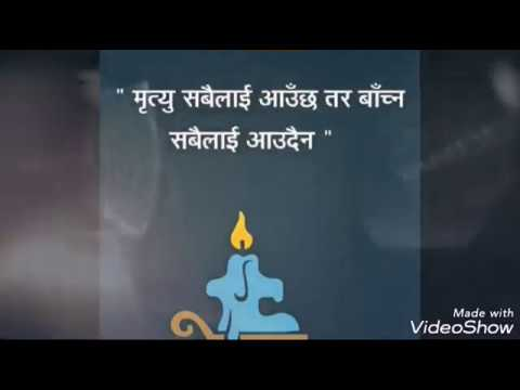 Quotes about friendship - Quotes Nepal   मन छुने लाइनहरु  Nepali Quotes   Nepali Status  nepali quotations