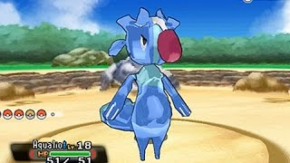 Hacked Pokemon Sun & Moon Starter by Unlisted Leaf