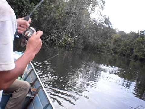 pescaria de piau e pacu no rio macaco (TABAPORA - MT)