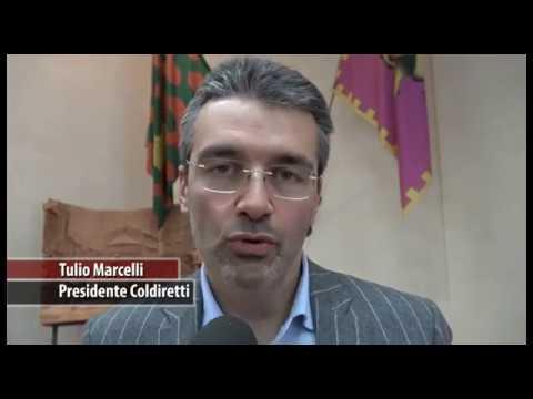"""Origine del grano in etichetta, Coldiretti: """"traguardo raggiunto"""""""