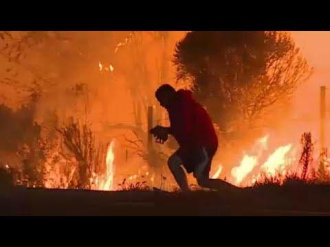 Καλιφόρνια: Απερίσκεπτος «ήρωας» πέφτει στις φλόγες για να σώσει ένα κουνελάκι …