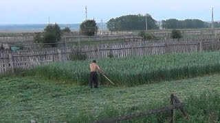 покос (mow the grass) timelapse таймлапс