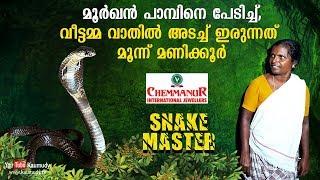 Video What lady did seeing a cobra | Vava Suresh | Snakemaster | EP 369 MP3, 3GP, MP4, WEBM, AVI, FLV Juni 2018