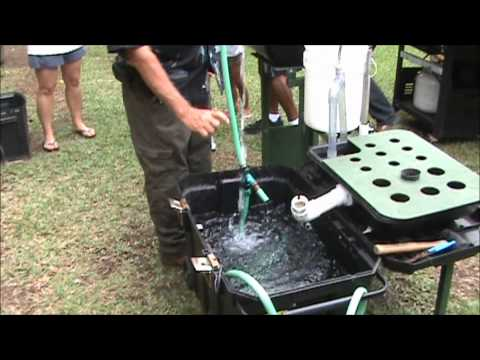 Aquaponics in Paradise Meetup #7