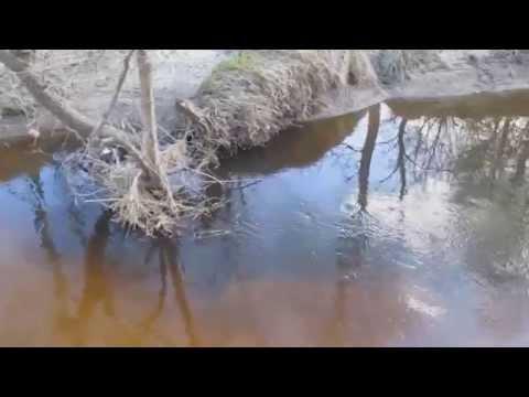 приготовление прикормки от рыболова сибирский странник денежные средства прошу