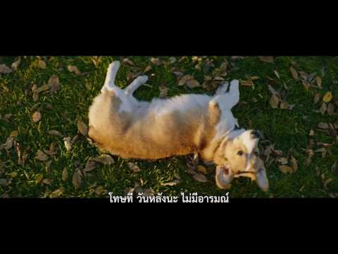 A Dog's Purpose | Film Clip 3 | Thai sub