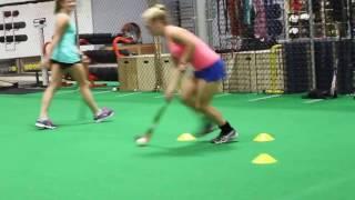 Beyond the Net Training