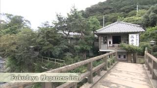 Shizuoka Japan  City new picture : Shizuoka Prefecture, Home of Mt. Fuji